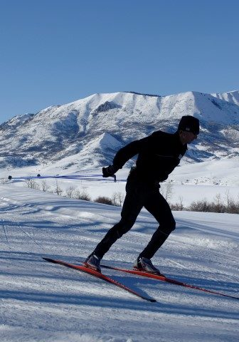 Image of Marabou cross country skiing